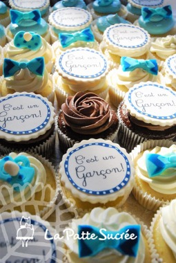 2015-03-20_DevoilementSexe_Cupcakes_Web